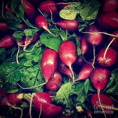 Healthy Eating Photograph - Radishes by Amy Cicconi