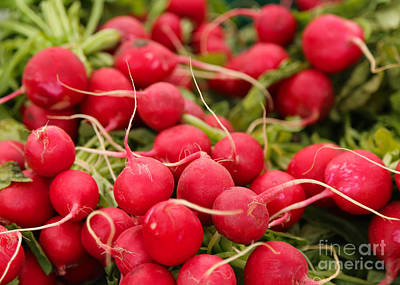 Photograph - Radishes by Carol Groenen