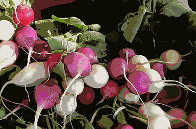 Bushel Photograph - Radishes by Karyn Robinson