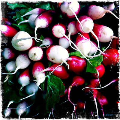 Photograph - Radishes by Randy Green