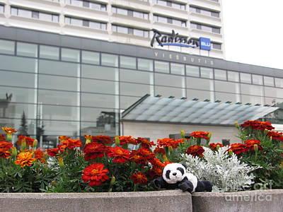 Photograph - Radisson Blu Lietuva. Baby Panda Likes It by Ausra Huntington nee Paulauskaite