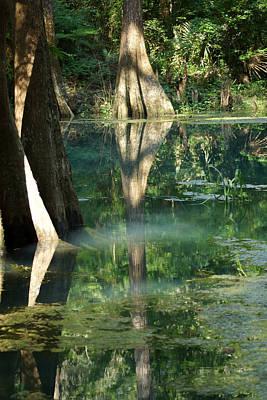 Radium Springs Creek In The Summertime Art Print