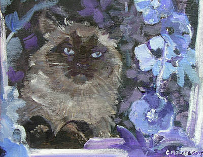 Photograph - Ragdoll Cat Blue Eyes Inside With Blue Hollyhocks by Christine Montague