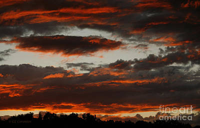 Photograph - Raging Sunset by Carol Lynn Coronios