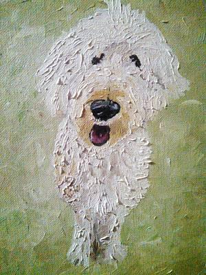 Labradoodle Painting - Raider by Nancy VanSchaack