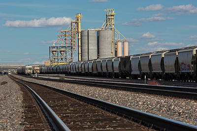 Freight Train Photograph - Rail Cargo Loading Facility by Jim West/science Photo Library