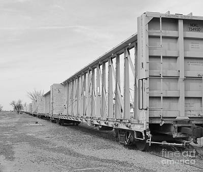 Rail Cars Art Print