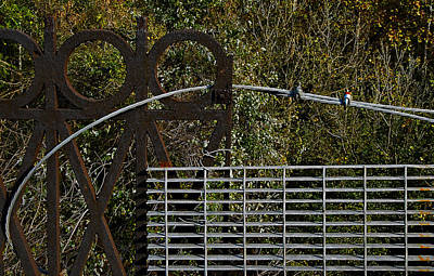 Grate Photograph - Railing by Murray Bloom