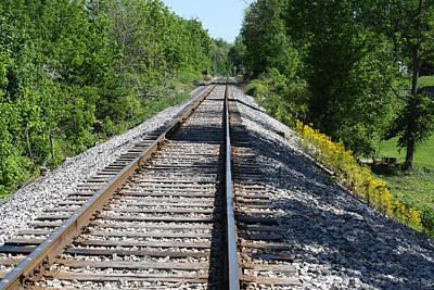 Digital Art - Railroad by Michele Wilson