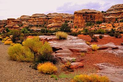 Rain At The Needles District 2 Art Print by Marty Koch