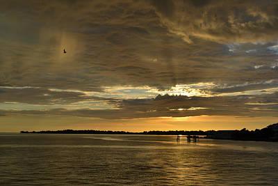 Photograph - Rain Bird At Sunset by rd Erickson