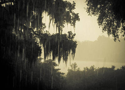 Photograph - Rain by Christy Usilton