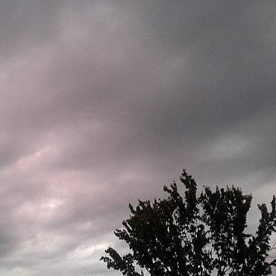 Vineyard Wall Art - Photograph - Rain Clouds... 8-6-13 Am by Lauren Vineyard