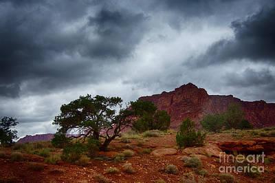 Photograph - Rain Coming by Rick Bragan