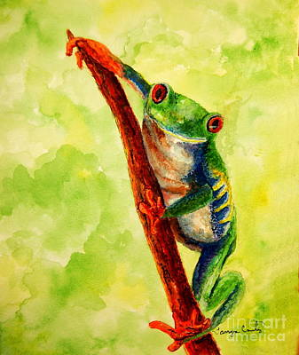 Painting - Rain Forest Frog by Tamyra Crossley