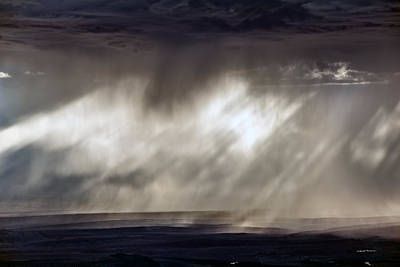 Painterly Photograph - Rain Patterns by Leland D Howard