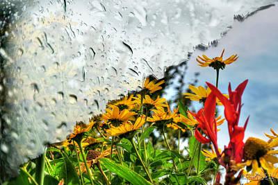 Rain Rain Go Away... Art Print by Michael Frank Jr