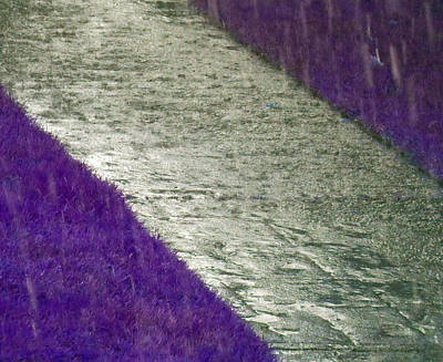 Photograph - Rain - Sidewalk - Grass 2 by Laurie Tsemak