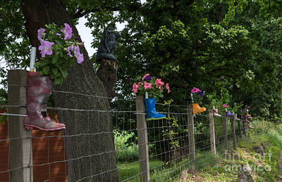 Re-purposed Photograph - Rainboot Planters In Rows by Iris Richardson