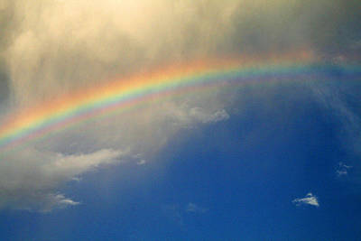 Photograph - Rainbow After The Storm by Karen Adams