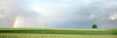 Rainbow And Storm Clouds Over A Field Art Print by Panoramic Images
