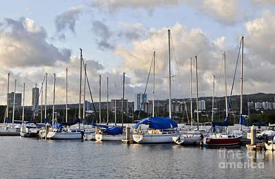 Photograph - Rainbow Bay Marina by Gina Savage