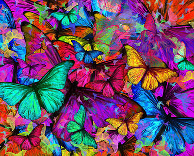 Rainbow Butterfly Explosion Print by Alixandra Mullins