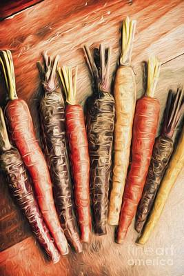 Digital Art - Rainbow Carrots. Vintage Cooking Illustration  by Jorgo Photography - Wall Art Gallery