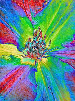 Photograph - Rainbow Clematis by Lora Fisher