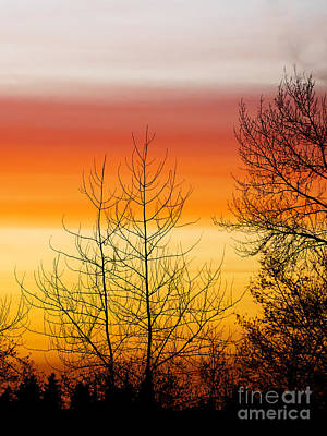 Photograph - Rainbow Colored Sunset 2 by MaryJane Armstrong
