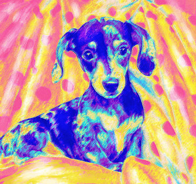Digital Art - Rainbow Dachshund by Jane Schnetlage