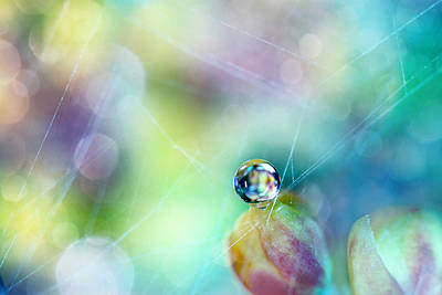 Photograph - Rainbow Drop by Sharon Johnstone