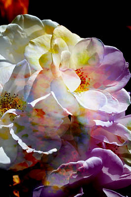 Photograph - Rainbow Floral by John Fish