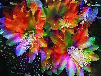 Rainbow Flowers Art Print
