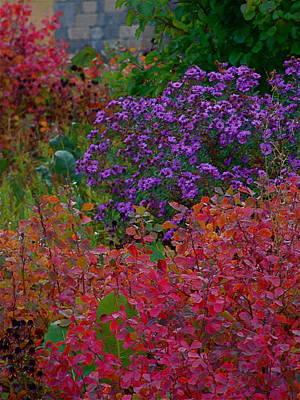 Rainbow Garden Art Print by Tim Good