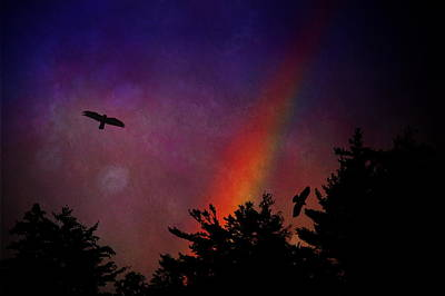 Photograph - Rainbow Hawks by Emily Stauring