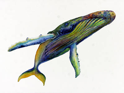 Humpback Whale Painting - Rainbow Humpback  by Michelle Scott