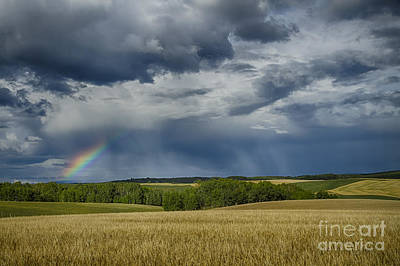 Photograph - Rainbow by Idaho Scenic Images Linda Lantzy