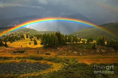 Silverton Colorado Photograph - Rainbow In The Forest by Adam Jewell