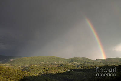 Photograph - Rainbow by Jeannette Hunt