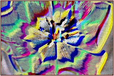 Discount Codes Digital Art - Rainbow Macro by Sonali Gangane