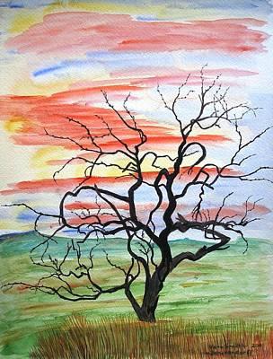 Rainbow Mesquite Art Print