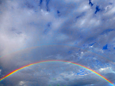 Photograph - Rainbow Morning by Claudia Goodell