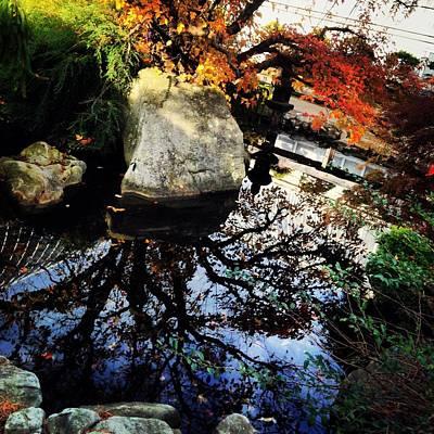Photograph - Rainbow Of Autumn Color by Angela Rath
