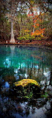 Chiefland Photograph - Rainbow Of Colors Manatee Springs1 by Sheri McLeroy