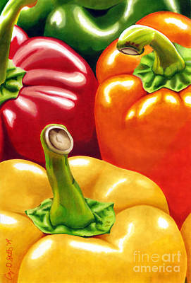 Drawing - Rainbow Of Peppers by Cory Still