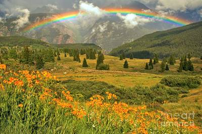 Photograph - Rainbow Over Wildflowers In The San Juan Mtns. by Adam Jewell