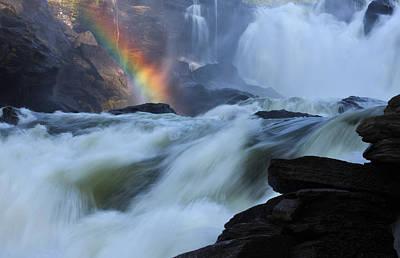 Photograph - Rainbow River by Dreamland Media