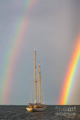 Photograph - Rainbow Sail by Susan Cole Kelly