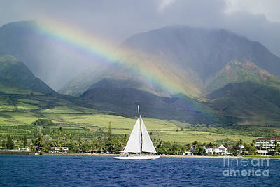 Photograph - Rainbow Sailboat Maui by M Swiet Productions